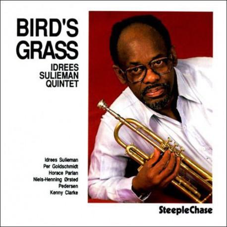 Bird`s Grass