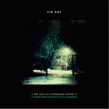 Tin Hat - the Rain Is a Handsome Animal