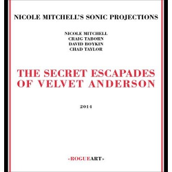 The Secret Escapades of Velvet Anderson