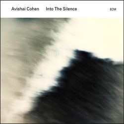 Into The Silence (LP)
