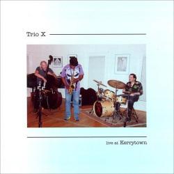 Trio X - Live at Kerrytown