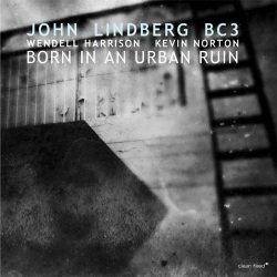 Born In An Urban Ruin