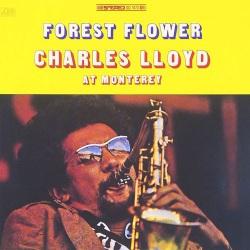 Forrest Flower - 180 Gram