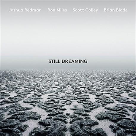 Still Dreaming