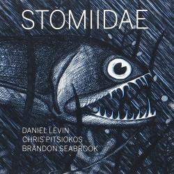 Stomiidae