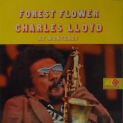 Forest Flower (Spanish Gatefold)