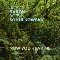 Now You Hear Me W/ Robyn schulkowsky