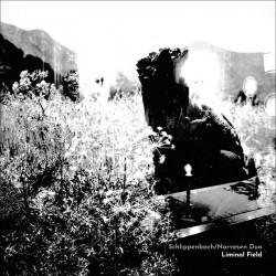 Schlippenbach - Narvesen Duo: Liminal Field
