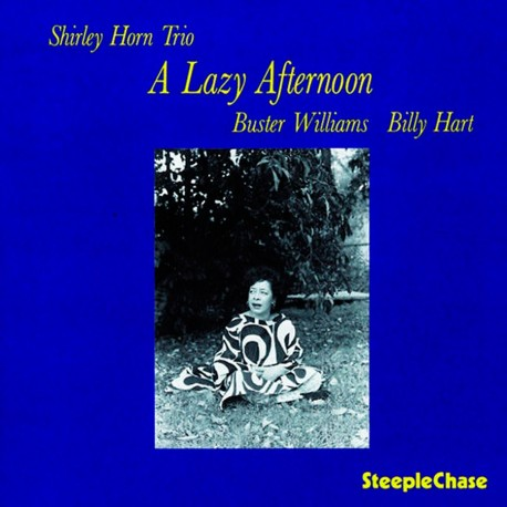 A Lazy Afternoon - 180 Gram