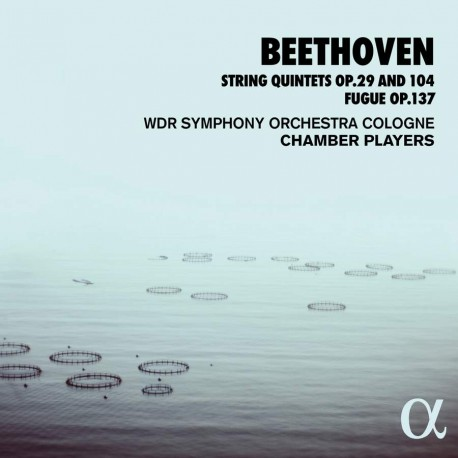 Beethoven - String 5tets Op 29 and104 Fugue Op 137