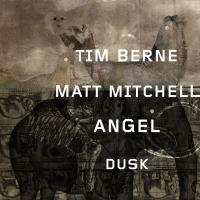 Angel Dusk W/ Matt Mitchell