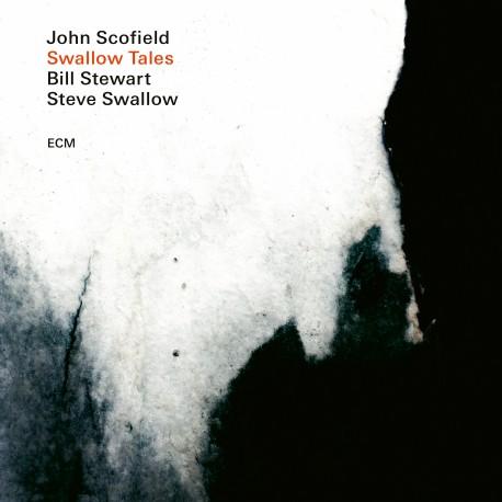 Swallow Songs