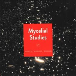 Mycelial Studies