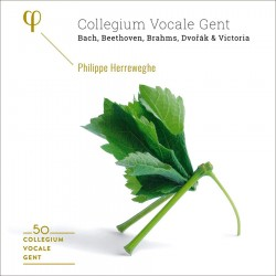 Collegium Vocale Gent: 50th Anniversary