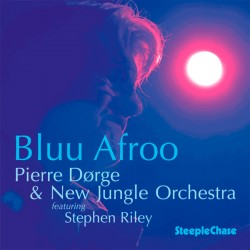 Bluu Afro - New Jungle Orchestra with Stephen Rile