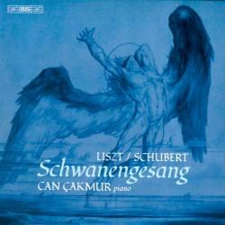 Litz-Schubert - Schwanengesang