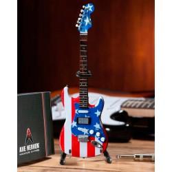 Fender Strat. - Stars & Stripes USA Wayne Kramer