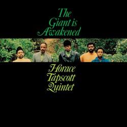 The Giant is Awakened (Gatefold)
