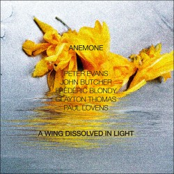 A Wing Dissolved in Light w/Peter Evans