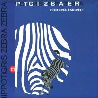 Hippotigris Zebra Zebra