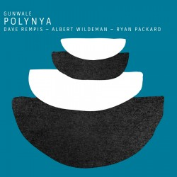 Polynya w/ Dave Rempis