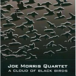 A Cloud of Black Birds