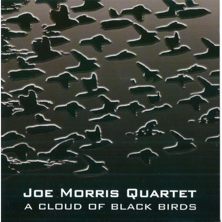 A Cloud of Black Birds