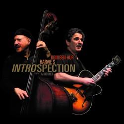 Instrospection W/ Harvie S & Tim Horner