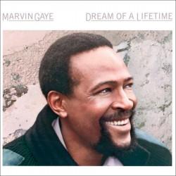 Dream of a Lifetime
