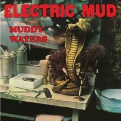 Electric Mud (Gatefold)