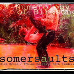Sumersaults - Numerology of Birdsong