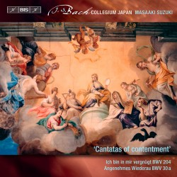 Bach, J.S.– Secular Cantatas, Vol.10