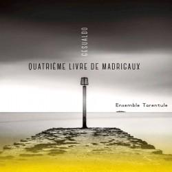 Gesualdo: Quatrième livre de madrigaux