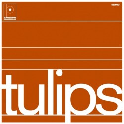 Tulips (Phonoscope)