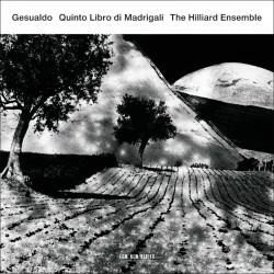 Carlo Gesualdo - Quinto Libro Di Madrigali