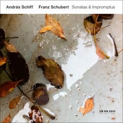 Franz Schubert - Sonatas and Impromptus