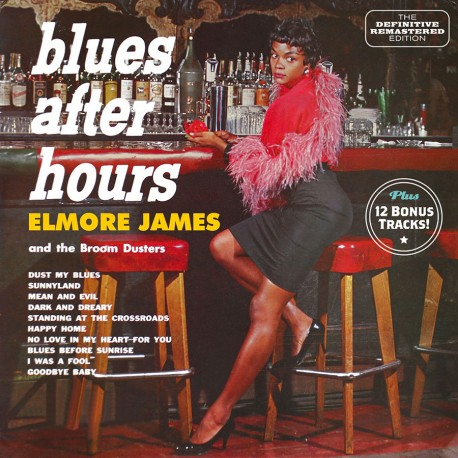 And the Broom Dusters - Blues After Hours