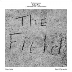 Motion Trio - The Field
