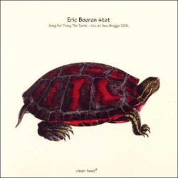 Song for Tracy the Turtle - Live at Brugge 2004