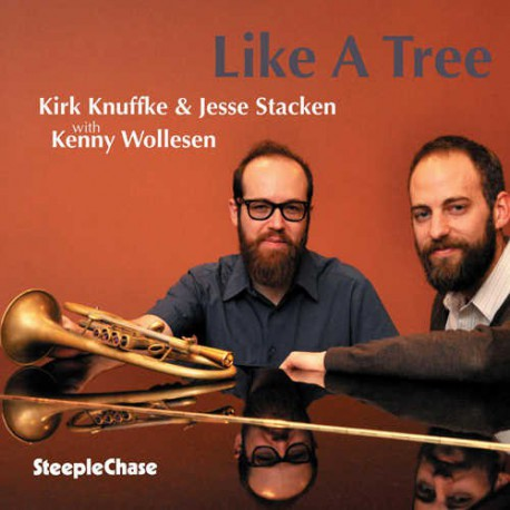 Like a Tree with Kenny Wollesen